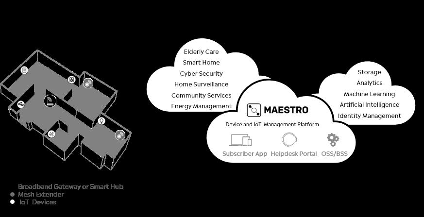 MAESTRO, Device management software